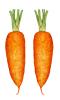 Porkkana #2
