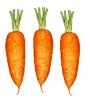 Porkkana #3