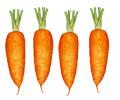 Porkkana #4